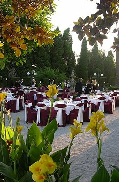 Оформление бордовой свадьбы