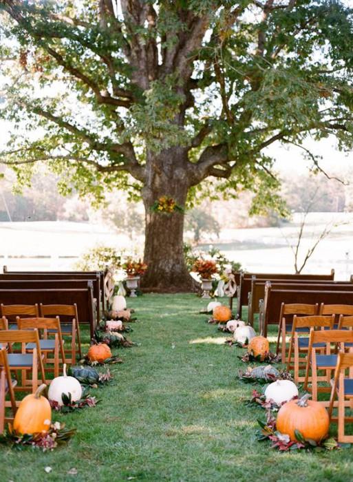 Тыквы в свадебном декоре